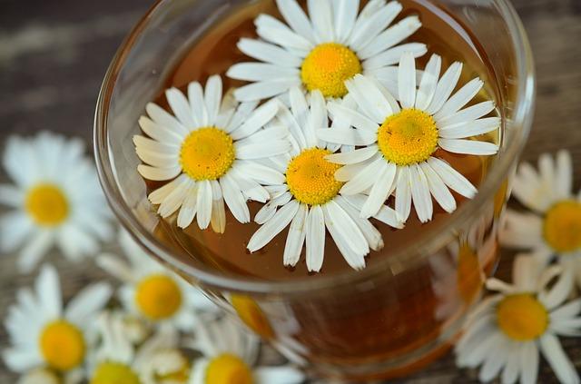 heřmánkové květy.jpg